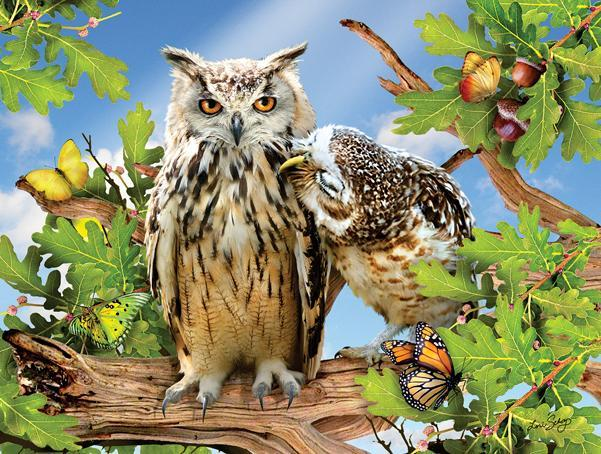 Owl Always Love You 500pc Jigsaw Puzzle | Lori Schory