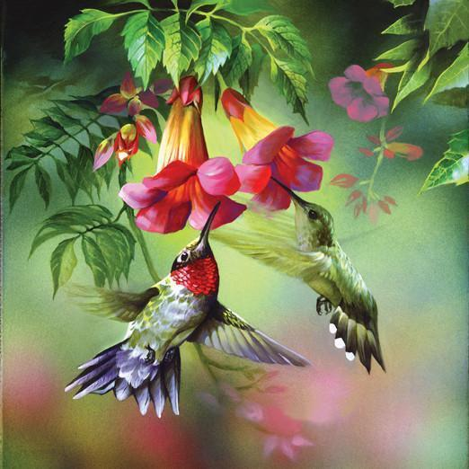 Summer Hummer 1000pc Jigsaw Puzzle | Spencer Williams