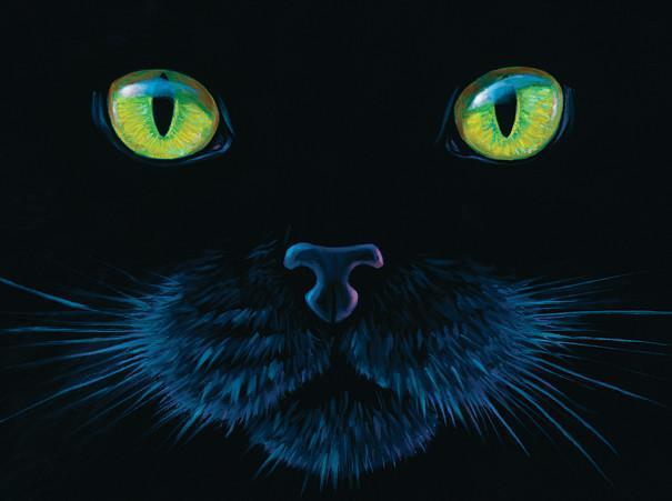Black Cat 1000pc Jigsaw Puzzle | Lynn Bragg
