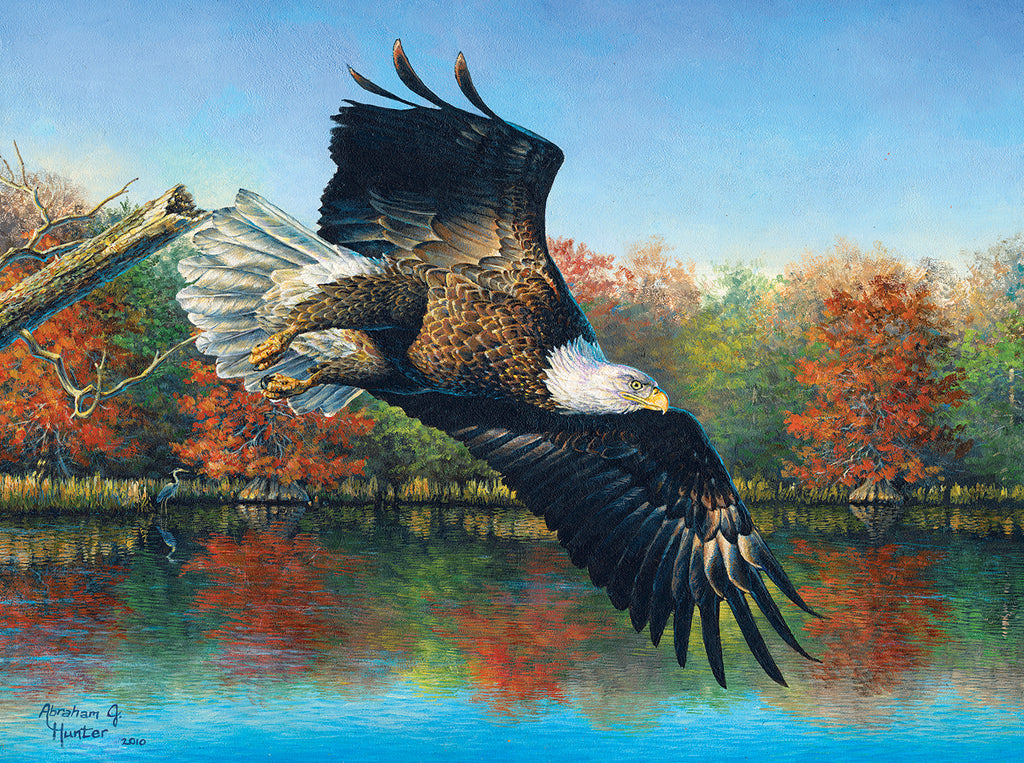 Wetlands Eagle