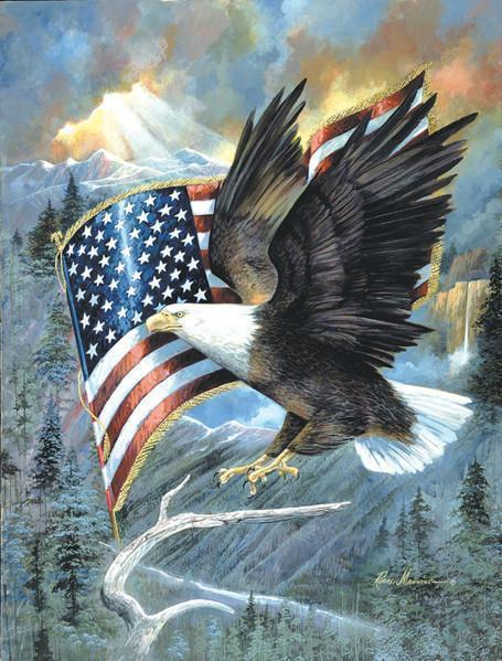 American Eagle 500pc Jigsaw Puzzle | Raune Manning