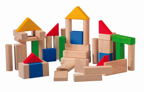 50 Unit Wooden Building Blocks