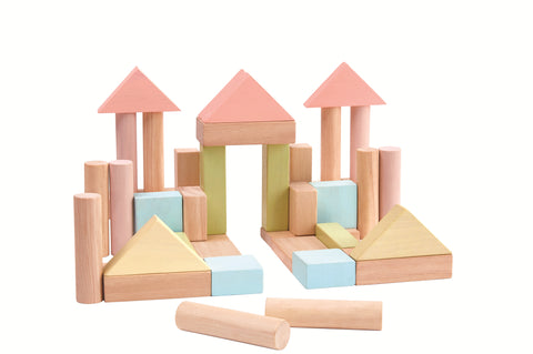 40 Unit Wooden Pastel Building Blocks