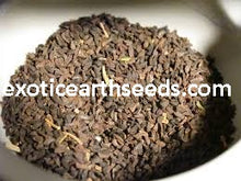 Load image into Gallery viewer, FREE SHIPPING SYRIAN RUE SEEDS harmine harmaline PEGANUM HARMALA SEEDS