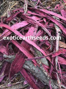 Mimosa Hostilis (CHIPPED / SHREDDED)  Root Bark MHRB JUREMA Tenuiflora BRAZILIAN BARK CLOTHING DYE