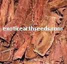 1000 + grams Mimosa Hostilis SHREDDED {shredded / chipped} Bark MHRB JUREMA Tenuiflora BRAZILIAN BARK  kilo kilogram