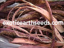 Load image into Gallery viewer, Mimosa Hostilis (CHIPPED / SHREDDED)  Root Bark MHRB JUREMA Tenuiflora BRAZILIAN BARK CLOTHING DYE