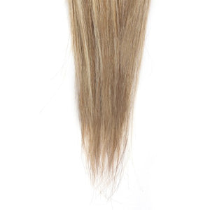 100g Straight Indian Remy Hair #8/613