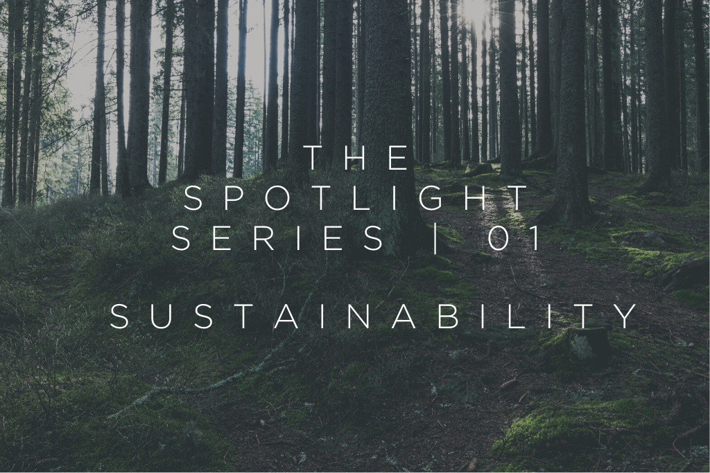 THE SPOTLIGHT SERIES | 01 - SUSTAINABILITY