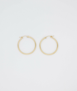Candela Gold Filled Tube Hoops