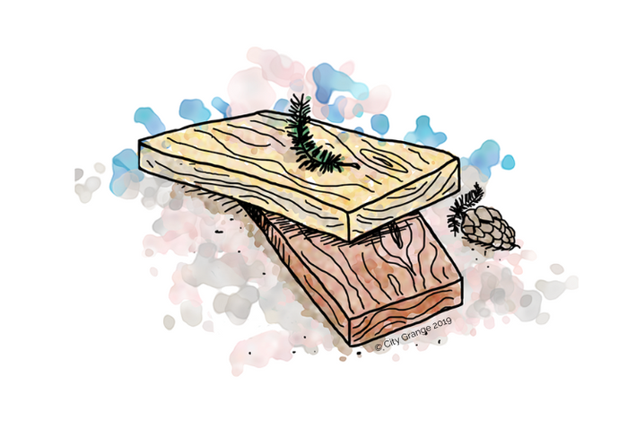 Cedar vs. Fir for Raised Bed Gardens