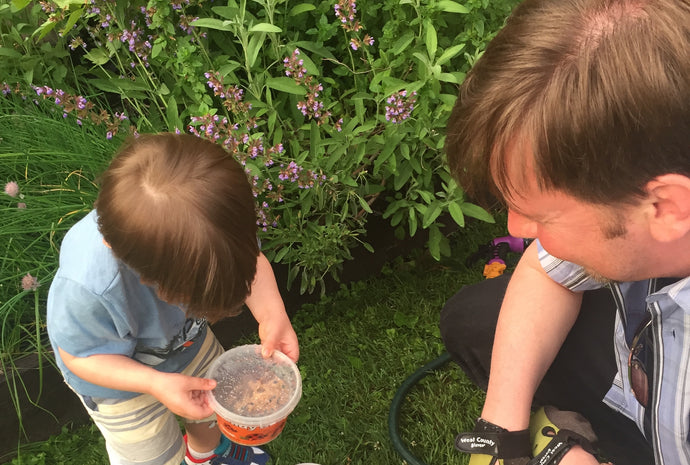 Gardening with Kids: Resources to Get Started