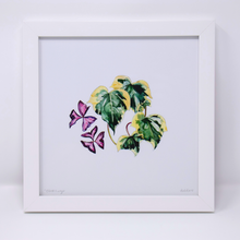 Load image into Gallery viewer, Limited Edition Houseplant Series: Print #7