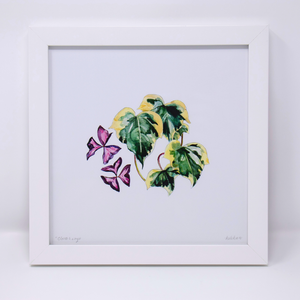 Limited Edition Houseplant Series: Print #7