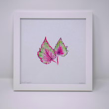 Load image into Gallery viewer, Limited Edition Houseplant Series: Print #2