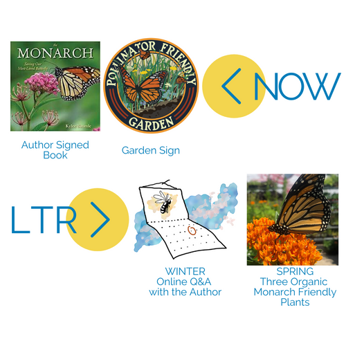 Now & Later: Monarch Butterflies