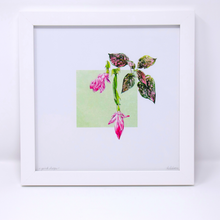 Load image into Gallery viewer, Limited Edition Houseplant Series: Print #3