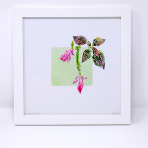 Limited Edition Houseplant Series: Print #3