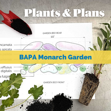 Load image into Gallery viewer, Native Plants & Plans: BAPA - Monarch Kit