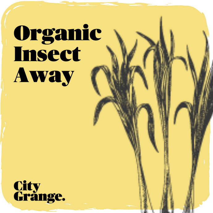 Organic Insect Away