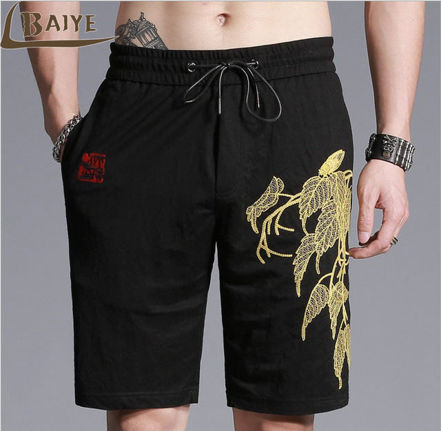 TBAIYE Men's Fashion Clothing Product Summer Shorts Leisure Cotton Beach Shorts Men Brand 2017 Knee Length 12Kinds Of Style-ivroe