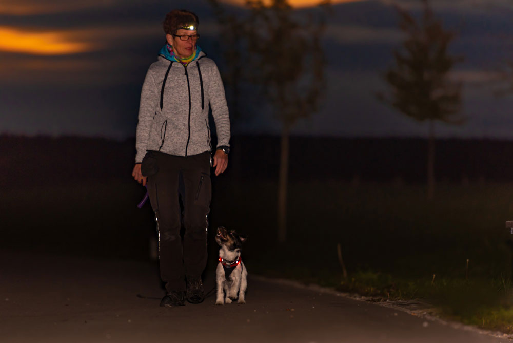 Woman wearing headlamp walking dog at night