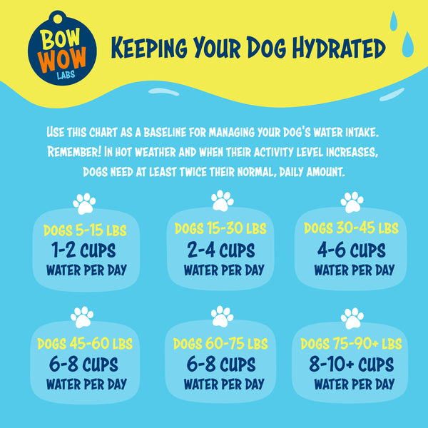 Chart_how_much_water_per_day_for_dogs_by_weight