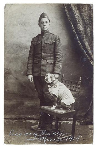 sergeant stubby decorated war dog