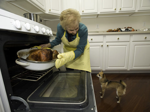 Woman removing Thanksgiving from oven with dog watching