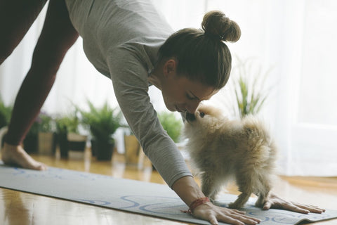 woman doing yoga with dog