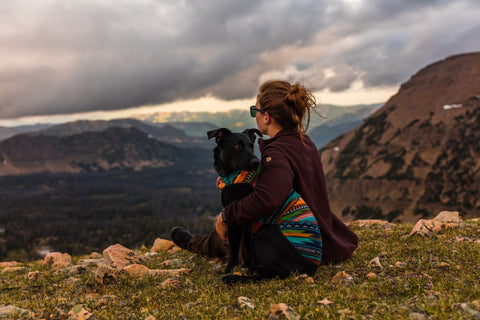 dog and owner hiking