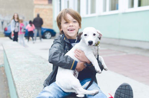 smiling-boy-holding-dog-in-front-of-school