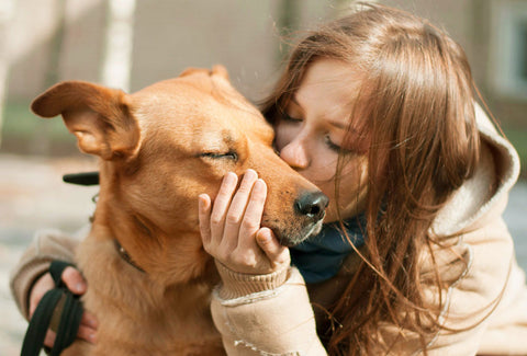 Woman kissing and hugging happy dog
