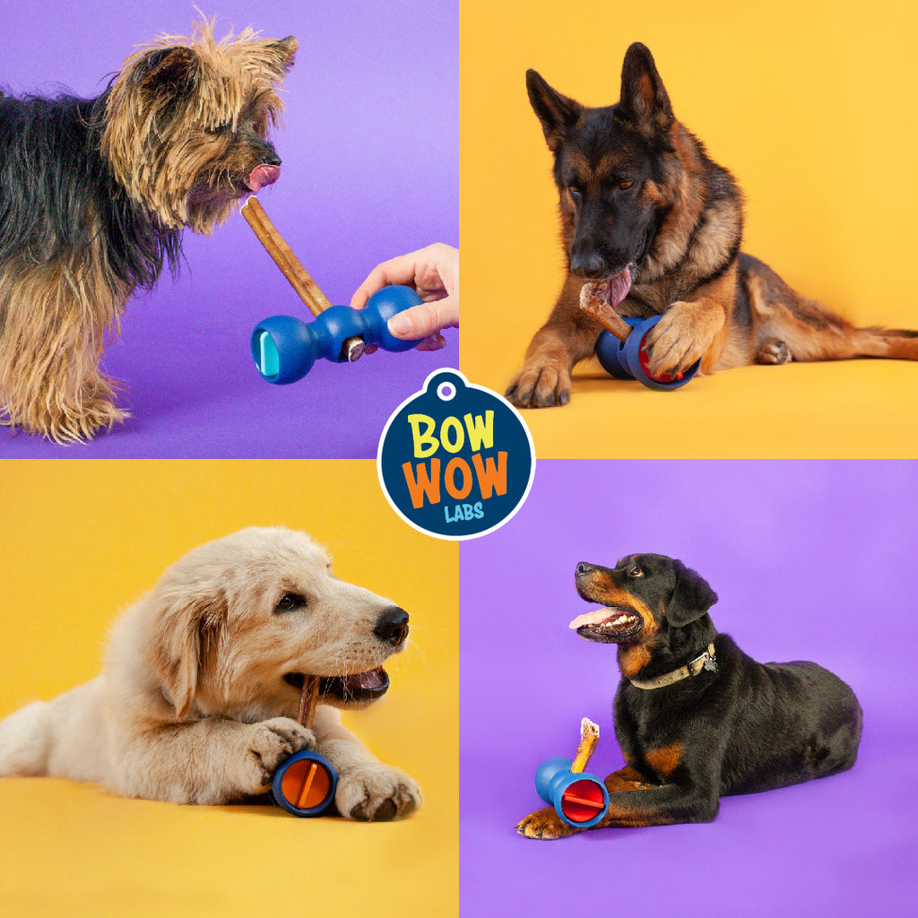 Bow Wow Labs Starter Kit - Start Now & SAVE 10 - 15%