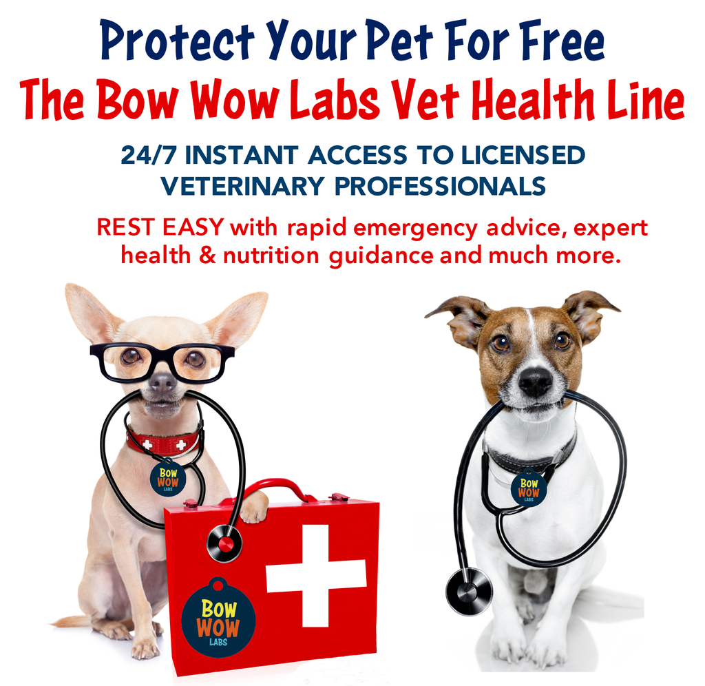 Vet Health Line - Annual Subscription