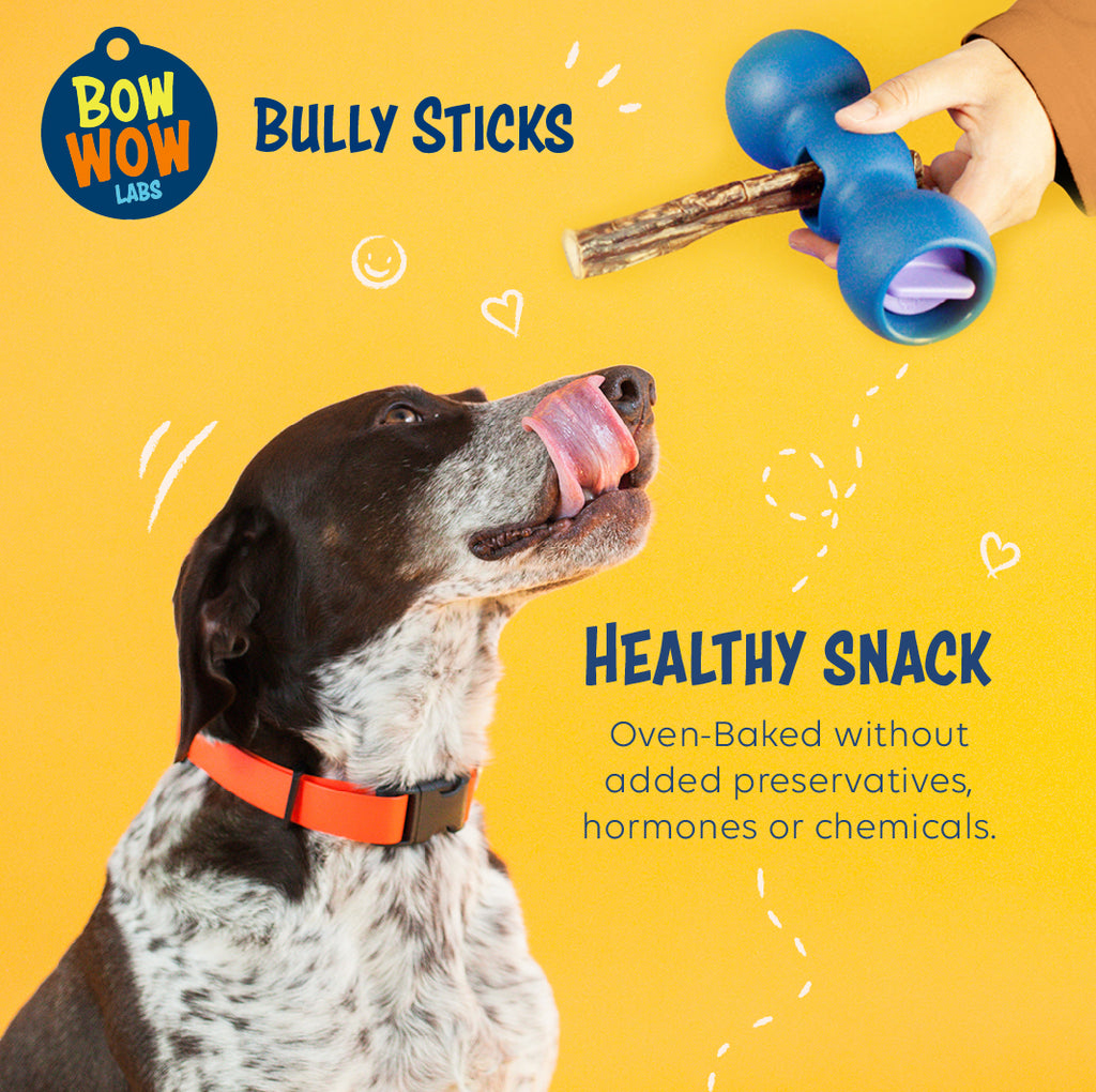 "Safe Fit 6"" Bully Sticks - Wholesale"
