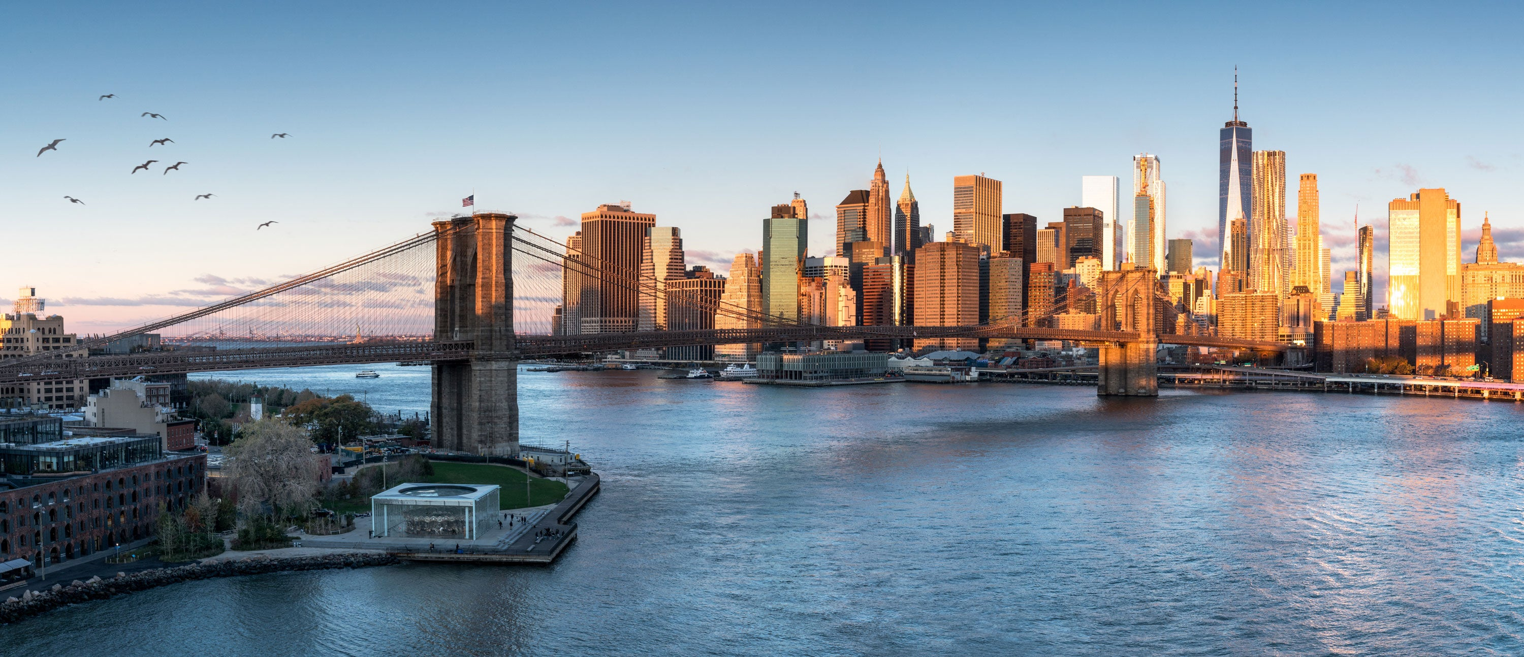 New York City and the CBD Trend