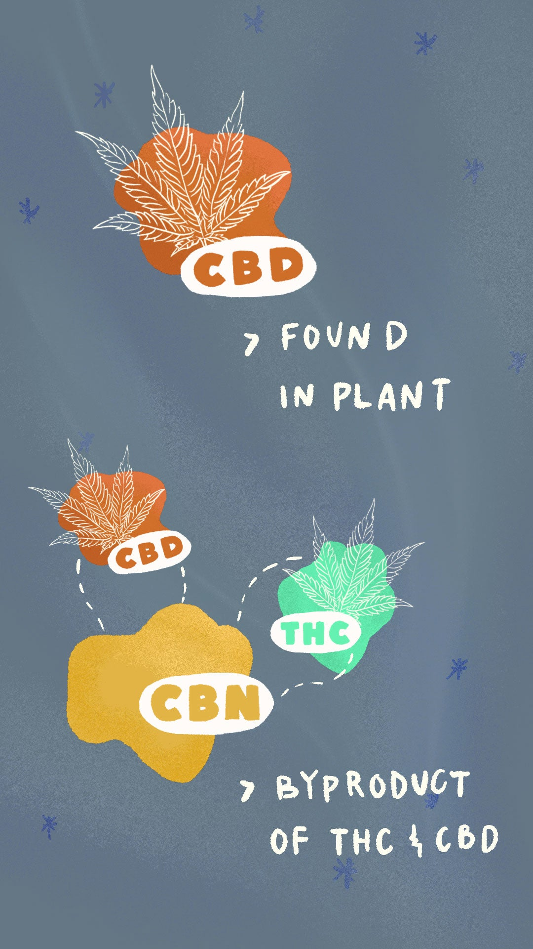 CBD is found in plants; CBN is byproduct by cannabinoids