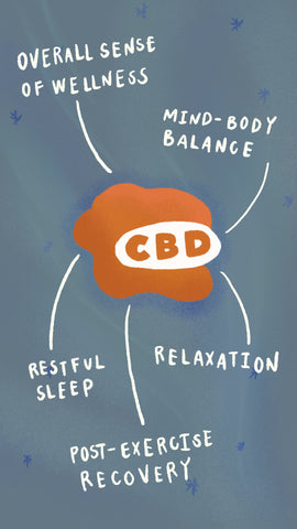 CBD benefits: wellness, balance, restful sleep, relaxation, post-exercise recovery