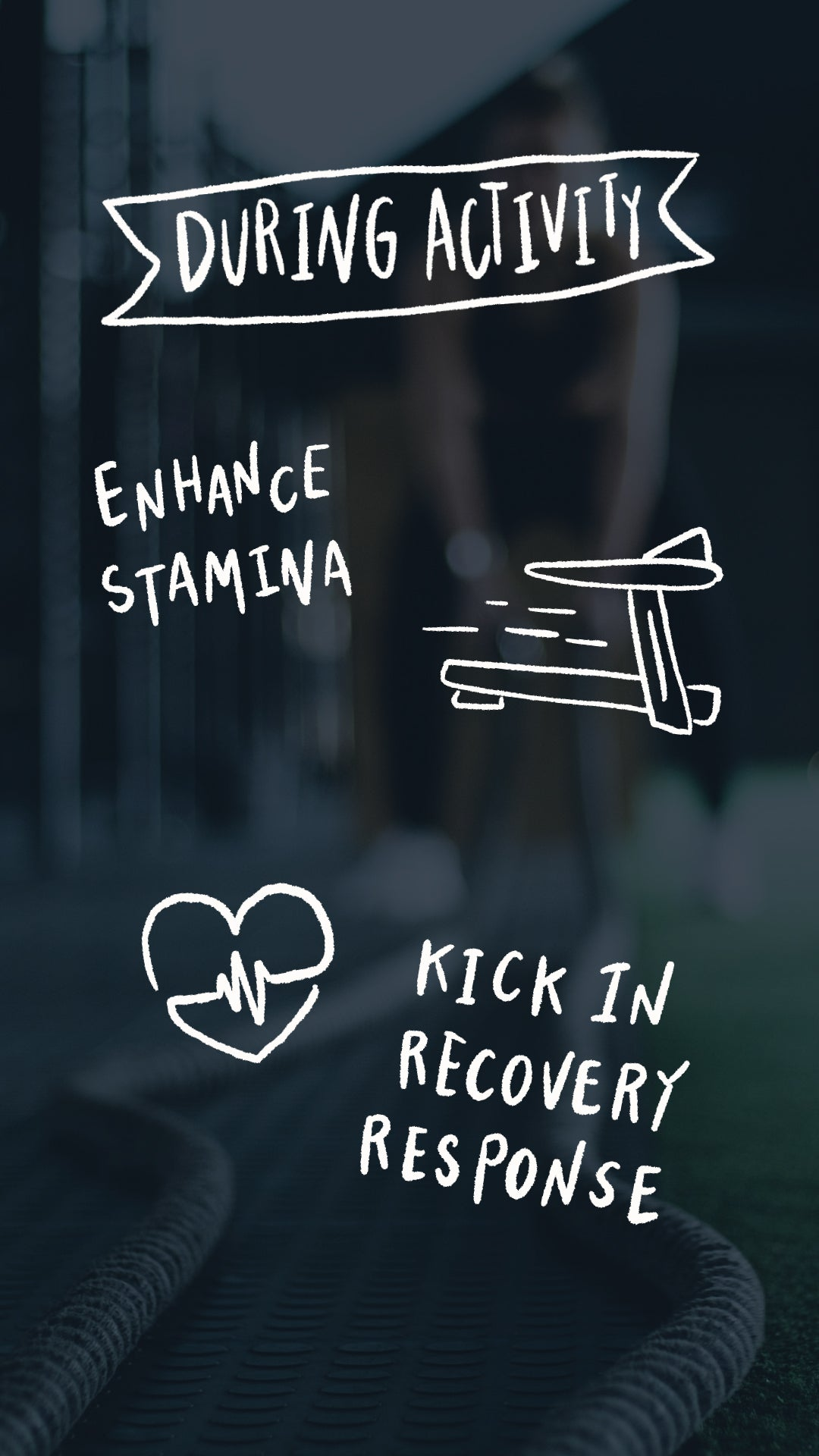 During activity: enhance stamina and kick in recovery response