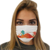 Dragon Nap Time Face Mask | TinyHumanClothing.com