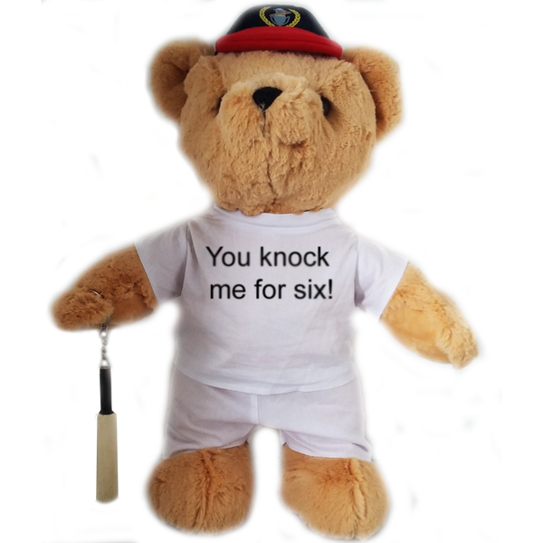 'You Knock Me For Six' Cricket Bear