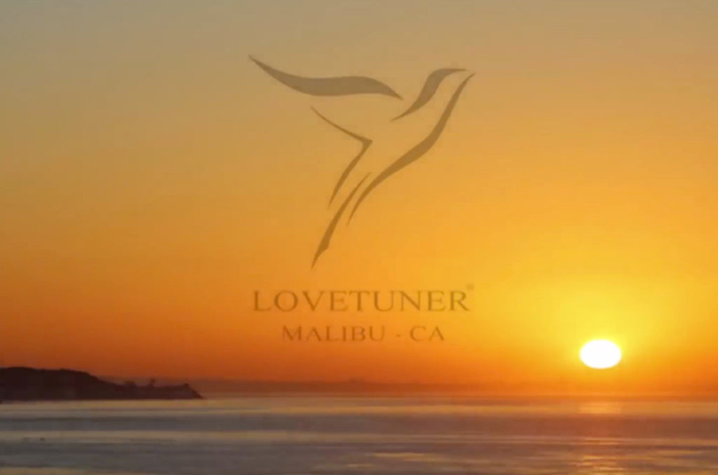 Malibu Beach Lovetuner Session