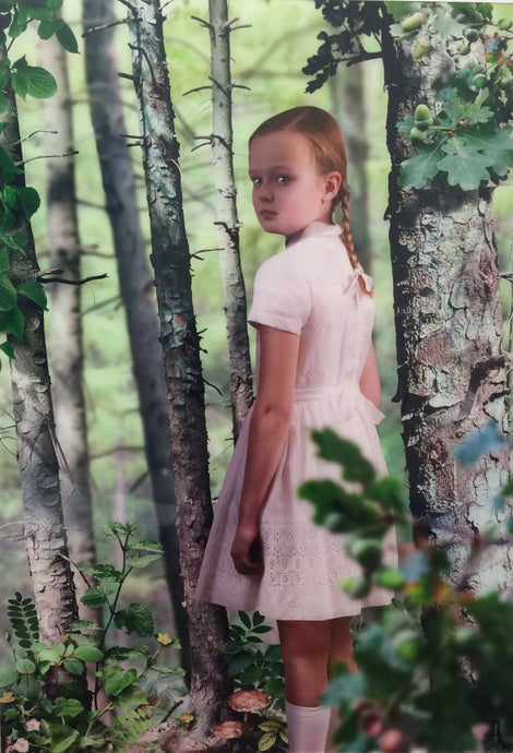 Ruud van Empel untitled#2 photography in diasec