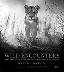 cover of black and white photbook wild encounters wildlife photography by david yarrow