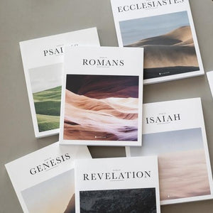 individual beautiful illustrated bible books