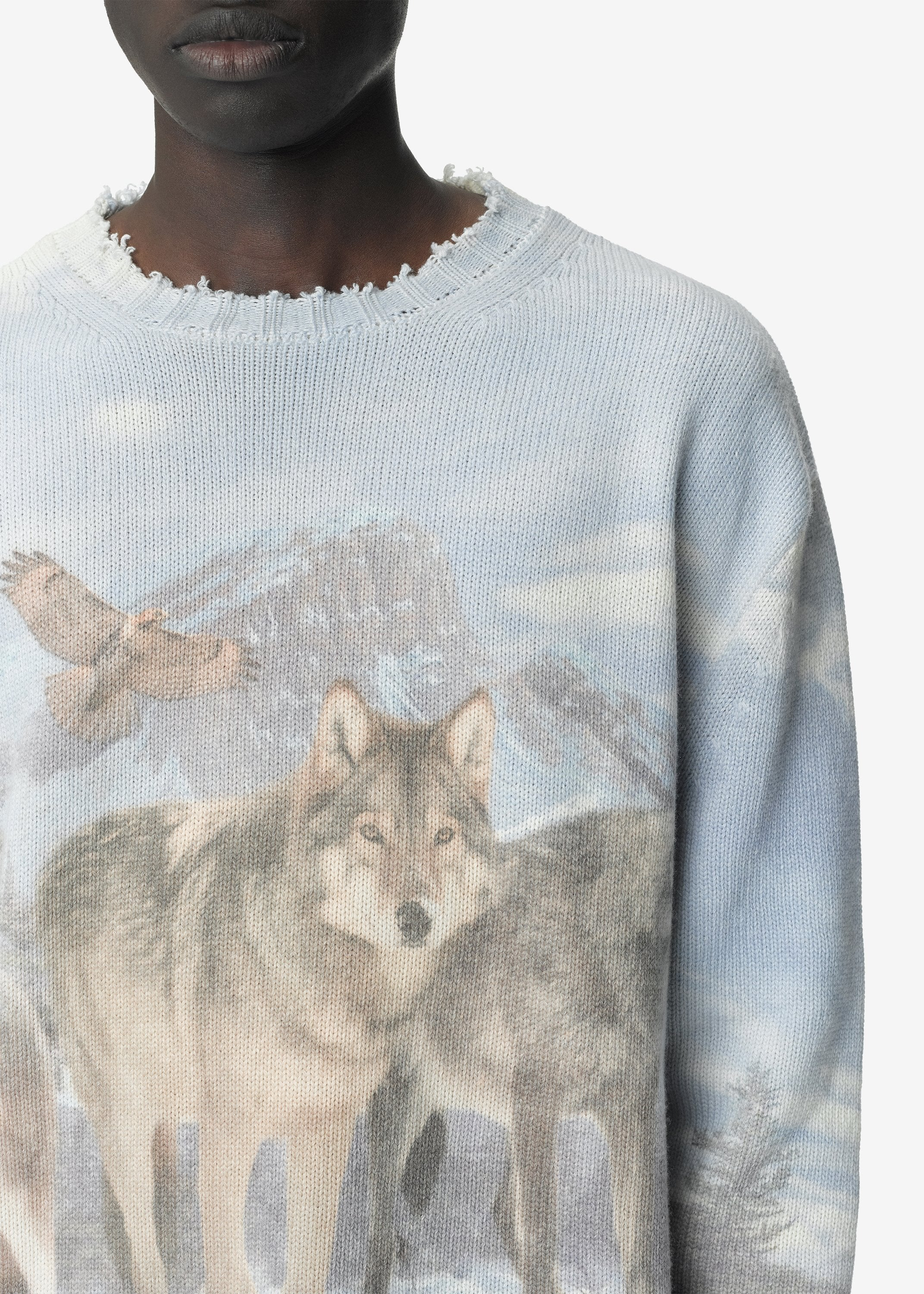 digital-print-wolves-crewneck-multicolor-image-2