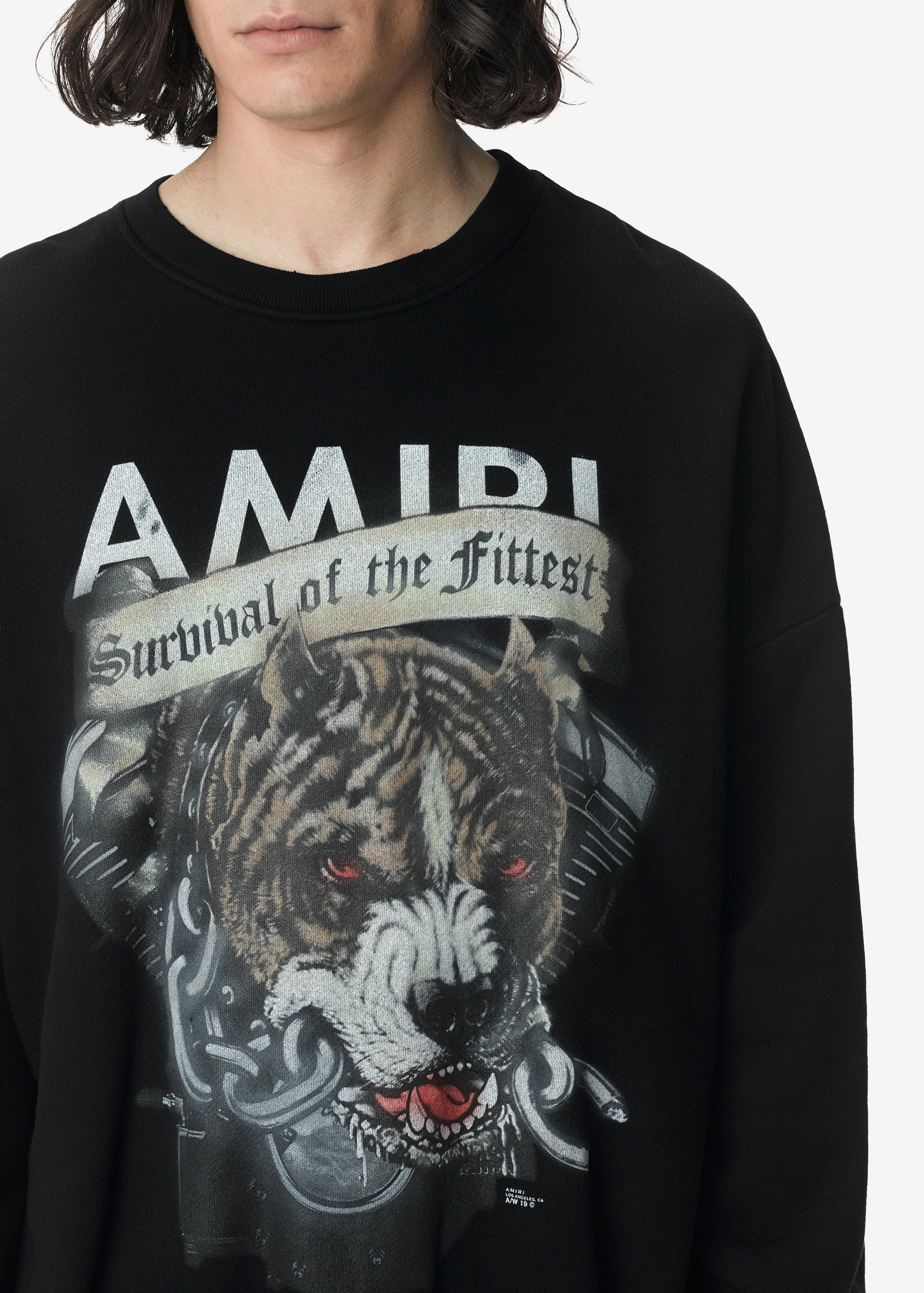 pitbull-crewneck-black-image-2