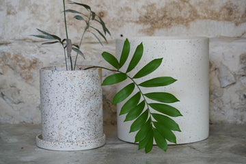 White Plant Pot Set