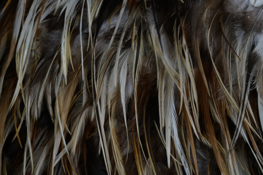 Indonesia wall feathers